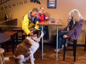 Is Second Self Brewery Dog Friendly